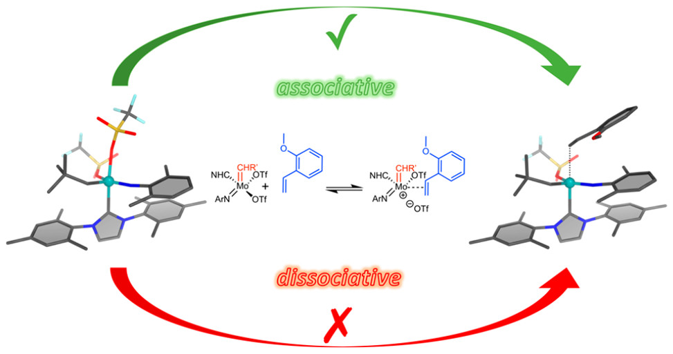 Mechanism of Olefin Metathesis with Neutral and Cationic Molybdenum Imido Alkylidene N-Heterocyclic Carbene Complexes