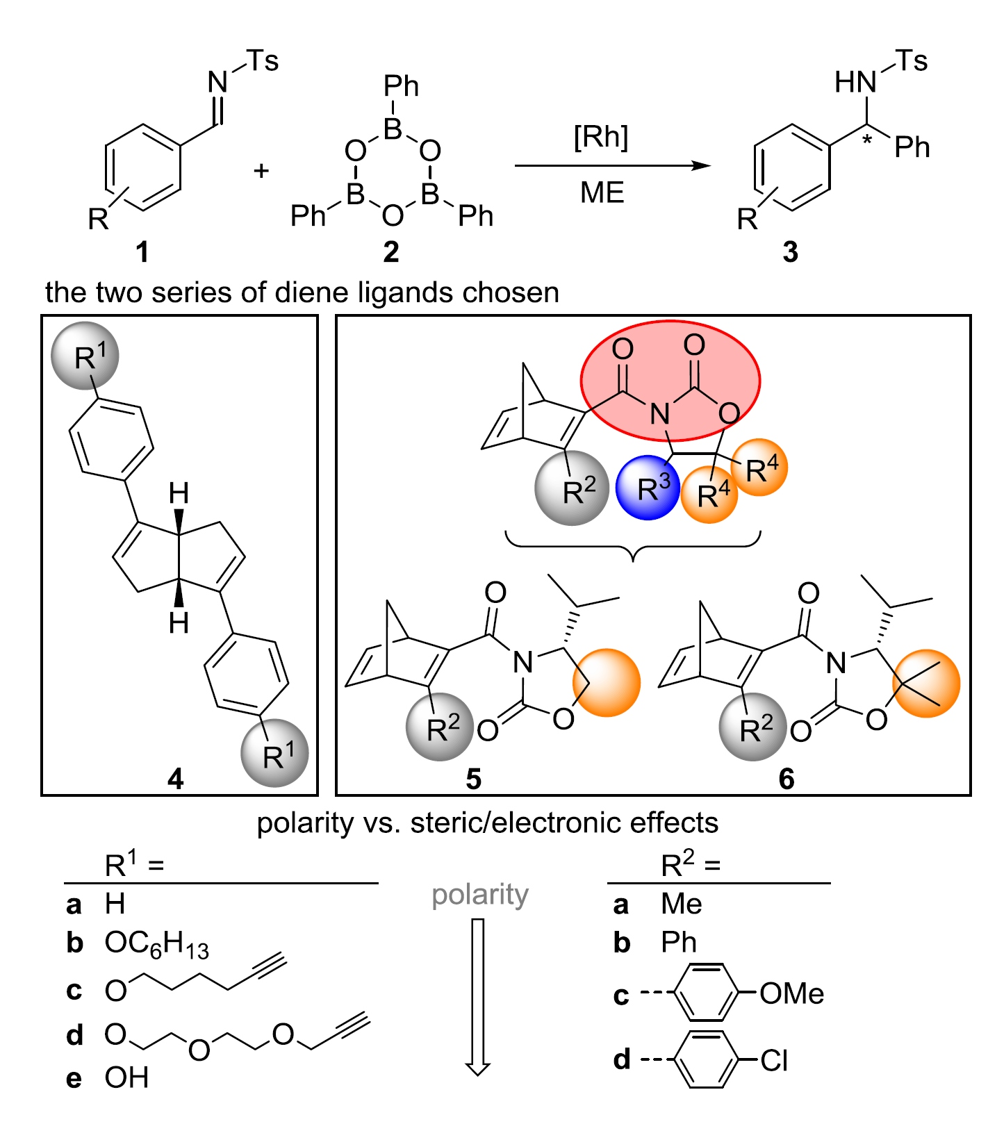 Asymmetric Catalysis in Liquid Confinement: Probing the Performance of Novel Chiral Rhodium Diene Complexes in Microemulsions and Conventional Solvents