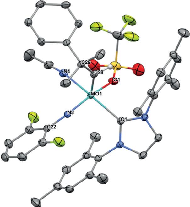 Origin and Use of Hydroxyl Group Tolerance in Cationic Molybdenum Imido Alkylidene N‐Heterocyclic Carbene Catalysts