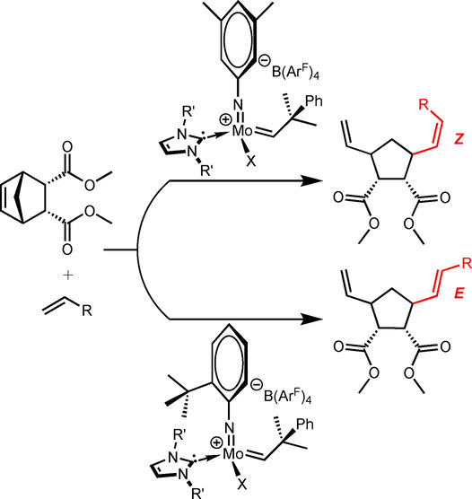 Stereoselective Olefin Ring-Opening Cross Metathesis Catalyzed by Molybdenum Imido Alkylidene N-Heterocyclic Carbene Complexes