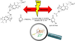 Experimental and Theoretical Study on the Role of Monomeric vs Dimeric Rhodium Oxazolidinone Norbornadiene Complexes in Catalytic Asymmetric 1,2- and 1,4-Additions