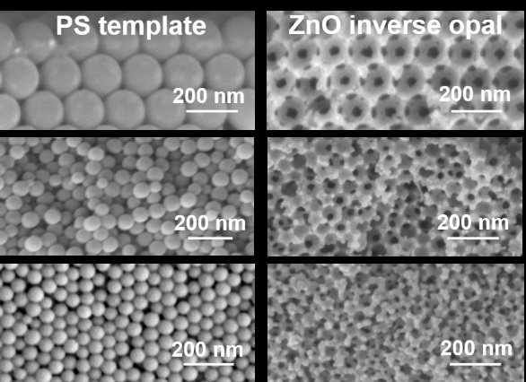 From Macro to Mesoporous ZnO Inverse Opals: Synthesis, Characterization and Tracer Diffusion Properties