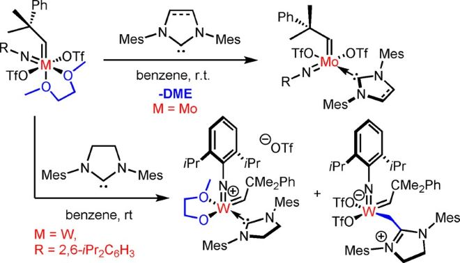 Cationic Group VI Metal Imido Alkylidene N-Heterocyclic Carbene Nitrile Complexes: Bench-Stable, Functional Group Tolerant Olefin Metathesis Catalysts